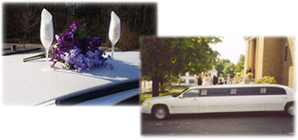 Champagne Flutes & Whit Stretch Limo